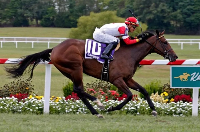 Moonlight Romance Win at Kentucky Downs