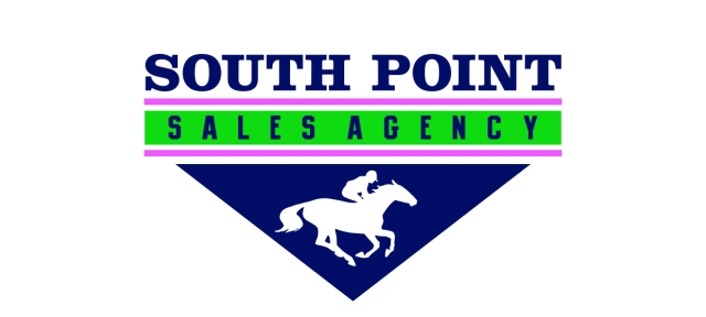Compact version of logo for South Point Sales